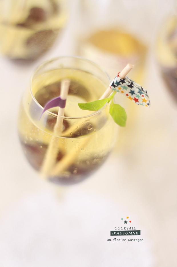 Cocktail-d'automne-au-floc-de-gascogne