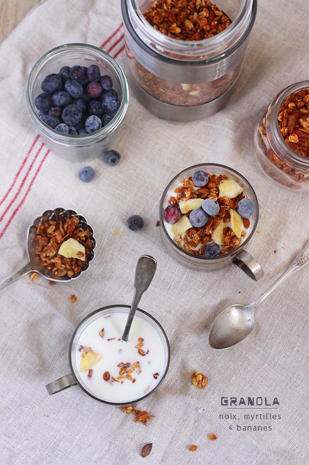 Granola-aux-fruits-secs-et-aux-myrtilles