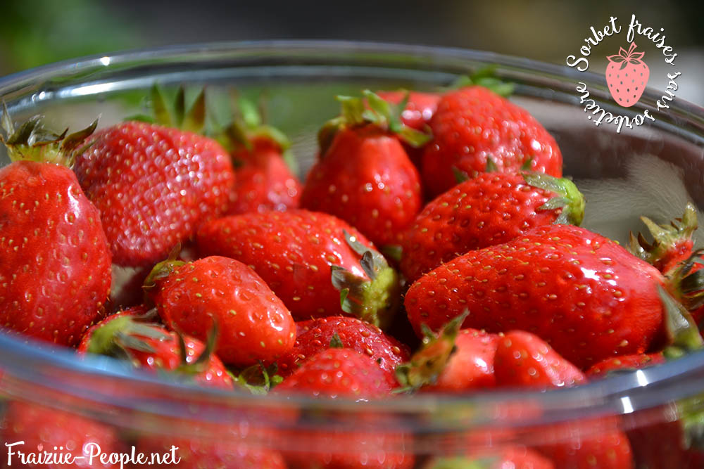 [Recette] Un sorbet fraises fait maison sans sorbetière ! - Vidéo (2/3)