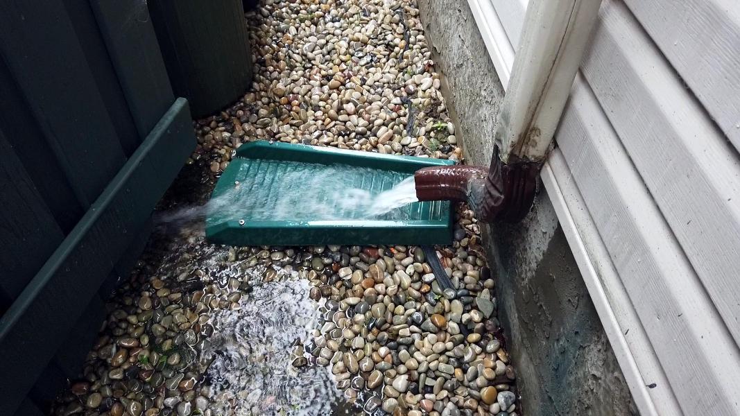 Rain draining out a rain spout onto splashblock