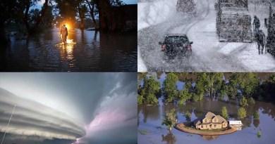 Глава ООН: адаптация к изменениям климата должна быть включена в планы восстановления после COVID-19