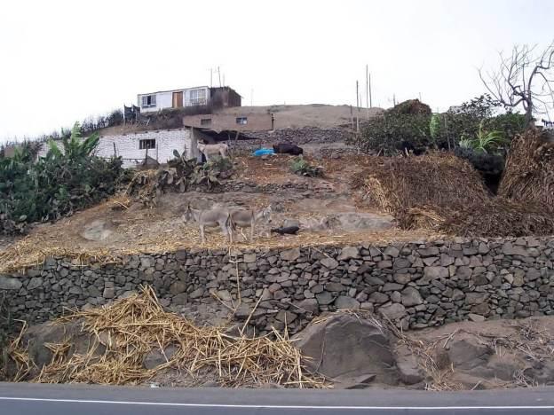 Hillside homes along pan american highway, peru