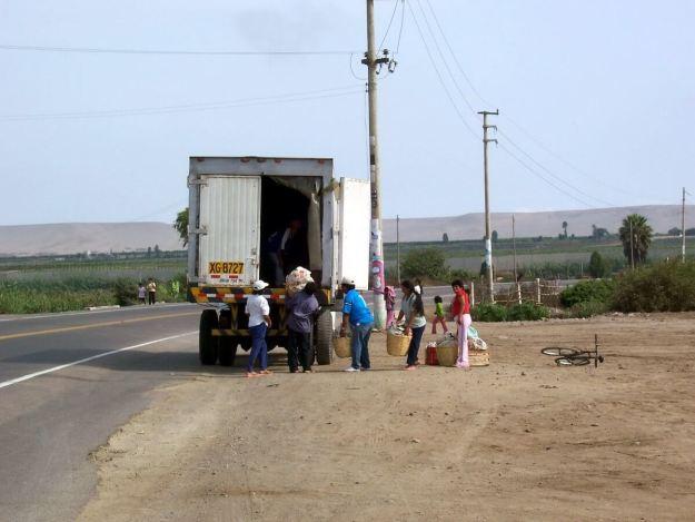 farmer workers bring produce to truck, pan american highway, peru