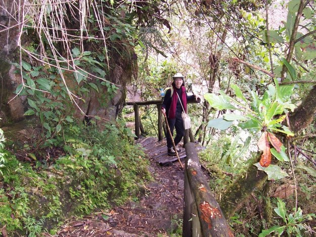 Jean on the Inca Trail near Wiñay Wayna in Peru, South America