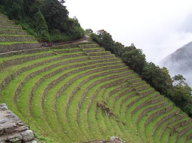 Upper terrace at the Wiñay Wayna ruins on the Inca Trail in Peru, South America