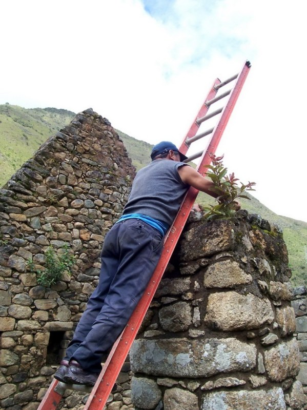 Worker repairs the top of a stone wall at the Inca ruins of Chachabamba in Peru, South America