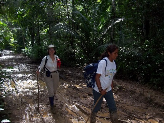 Jean hiking to Lake Sandoval in the Amazon Basin, Peru, South America