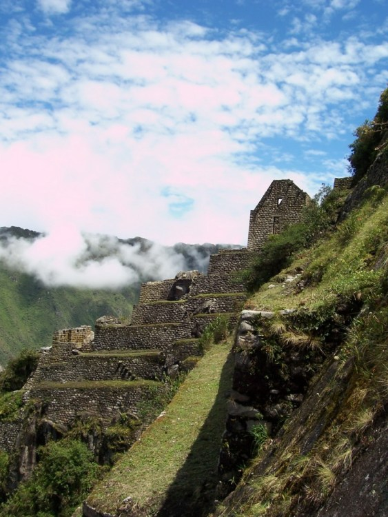 A mountain terrace and buildings on Huayna Picchu mountain, at Machu Picchu
