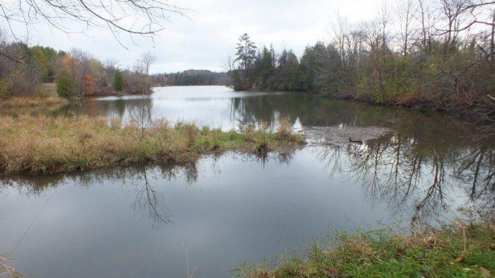 Milne-Dam-Conservation-Park-Markham-Ontario