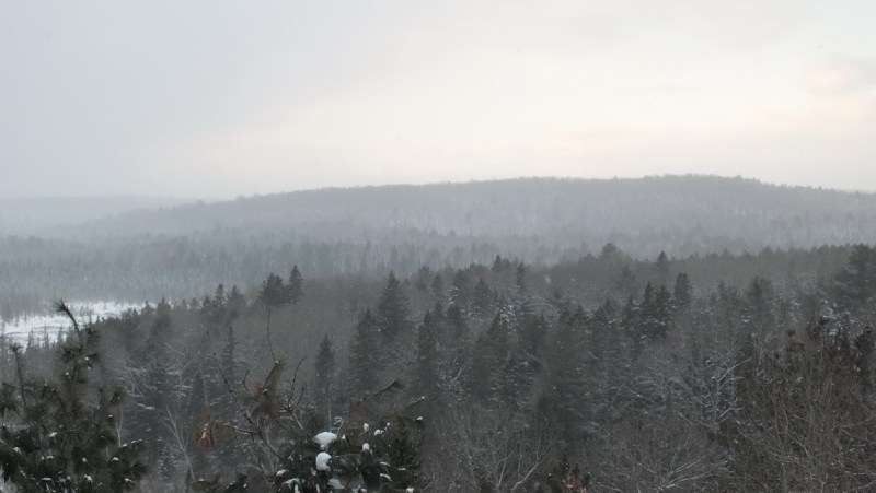 Algonquin Park - Ontario - Canada - January 27, 2013