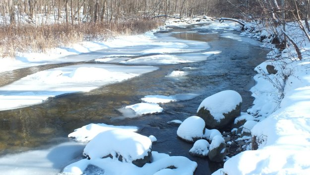 Green River - winter - Pickering - Ontario