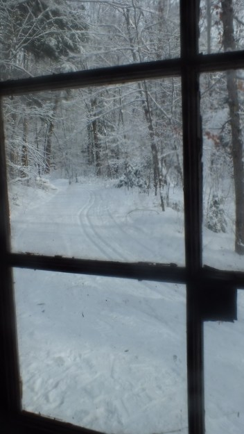 view out window of Fen Lake ski cabin - Algonquin Park - Ontario