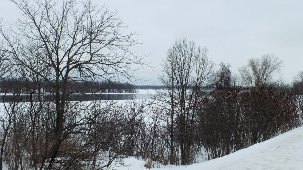 Frozen Ottawa River through trees along shoreline - Canada