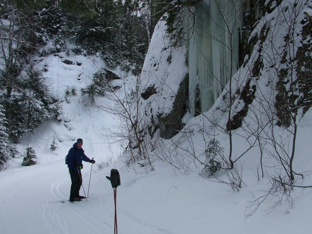 Bob - Leaf Lake Ski Trail - Algonquin Park