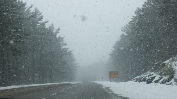 Highway 60 under snowstorm in Algonquin Provincial Park