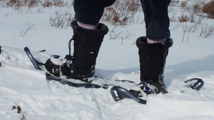 Jean's snowshoes in Algonquin Park