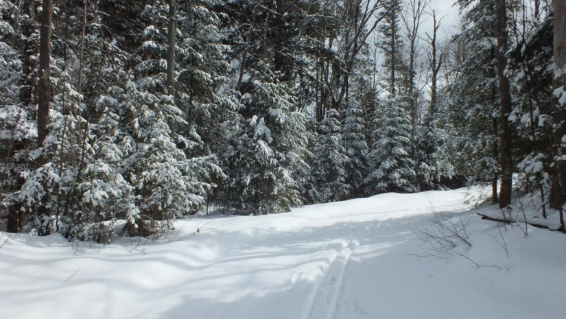 Leaf Lake ski trail, Algonquin Provincial Park, Ontario, Canada