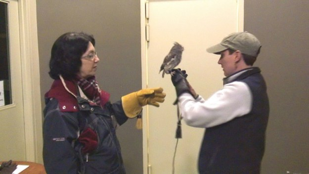Sandra and Jean with a Eastern Screech Owl -- Mountsberg Raptor Centre