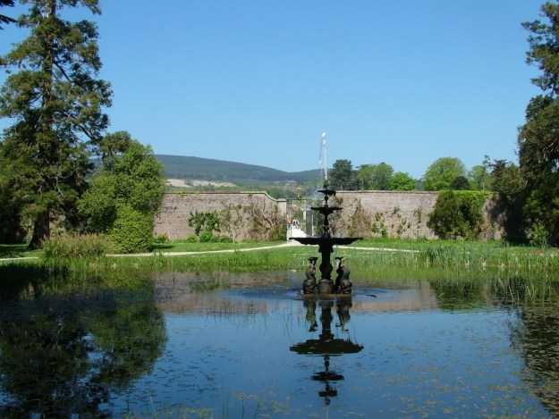 dolphin pond - powerscourt - wicklow - ireland