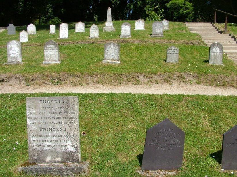 gravestones in Pets Cemetery - Powerscourt - Wicklow - Ireland