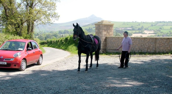 Chris with race horse and Sugar Loaf Mountain in distance - Onagh Farm - Enniskerry - Wicklow - Ireland