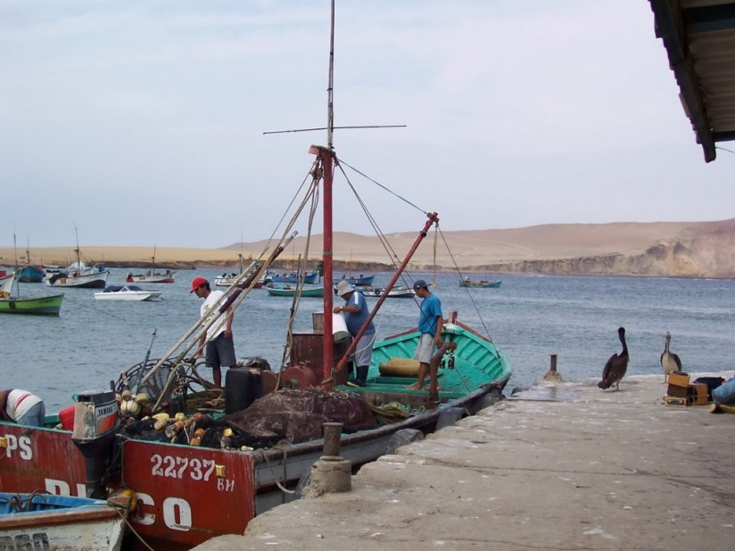 Fishing boat at the dock in Playa Lagunillas in Paracas National Reserve, Ica, Peru.