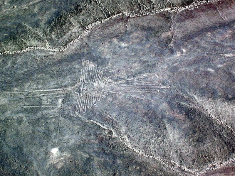 aerial view of - the humming bird - geoglyph at nazca lines of peru