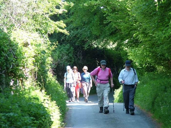 hikers near Lackandarragh Lower - Wicklow - Ireland