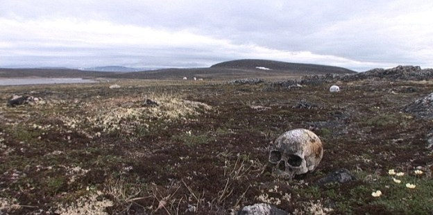 human skulls on the surface of kekerten island - nunavut