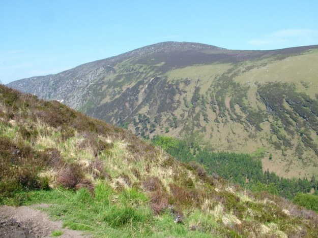 mountain side - wicklow mountains national park - ireland