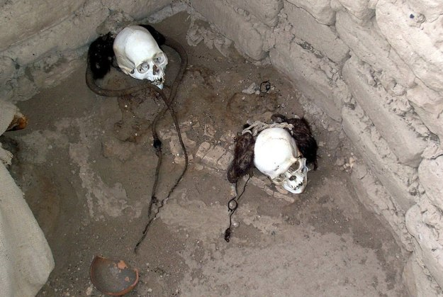 two mummified human skulls with hair - chauchilla cemetery - peru