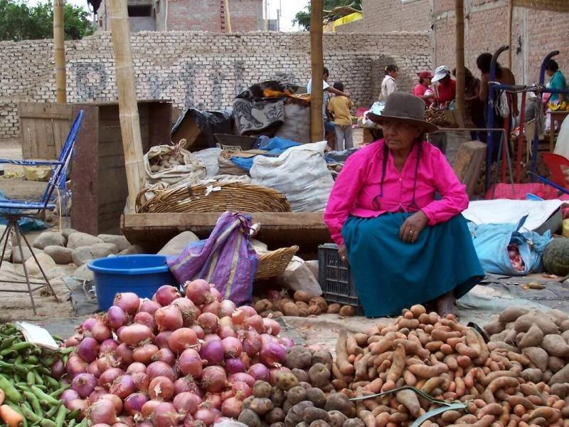 vendor in street market - nazca - peru
