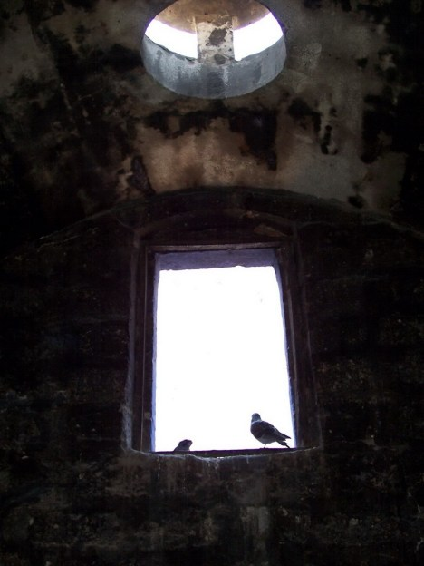 Birds sit at window at Santa Catalina Monastery, Arequipa, Peru