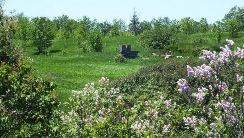 ruins on hillside - forks of the credit provincial park - ontario