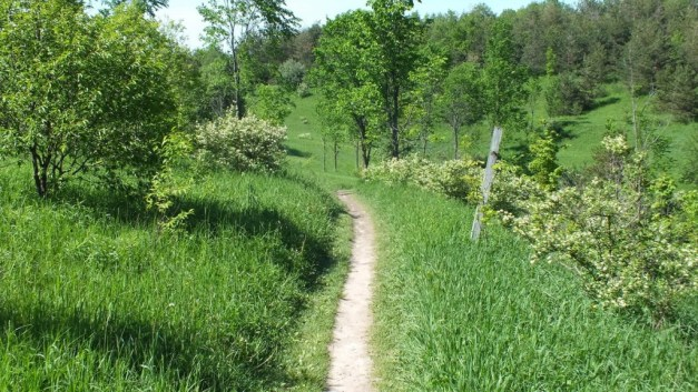 meadow hiking trail - forks of the credit provincial park - caledon - ontario