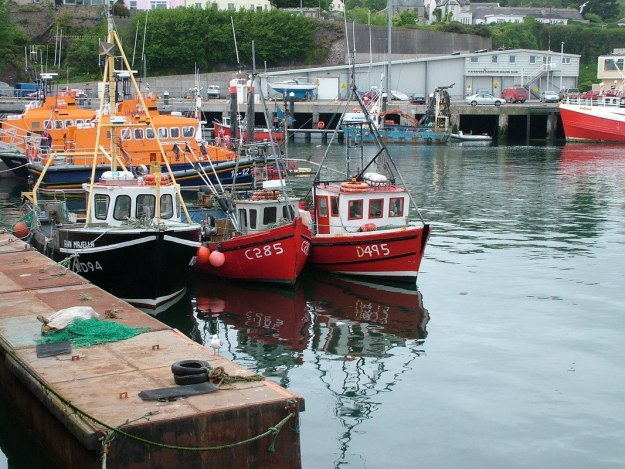 fishing boats in dunmore east harbour in county waterford - ireland