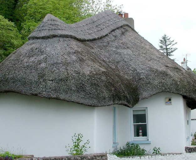 thatched roof on a cottage at dunmore east in county waterford - ireland