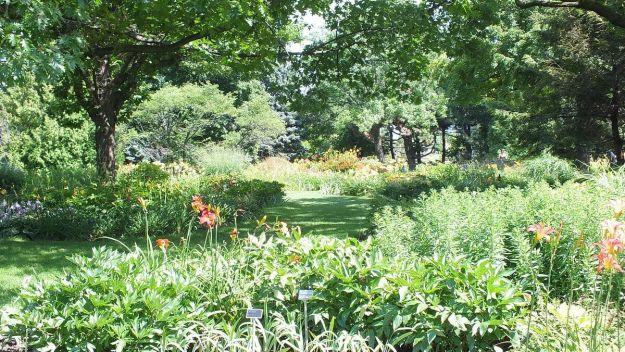 Daylily Garden at Montreal Botanical Garden - Frame To Frame Bob & Jean