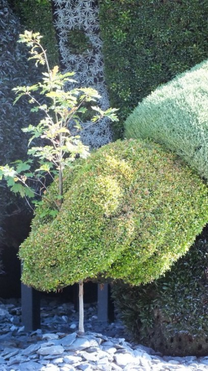 Close up of the hand of The Man Who Planted Trees topiary at Mosaiculture 2013 at Montreal Botancial Garden, Montreal, Quebec, Canada