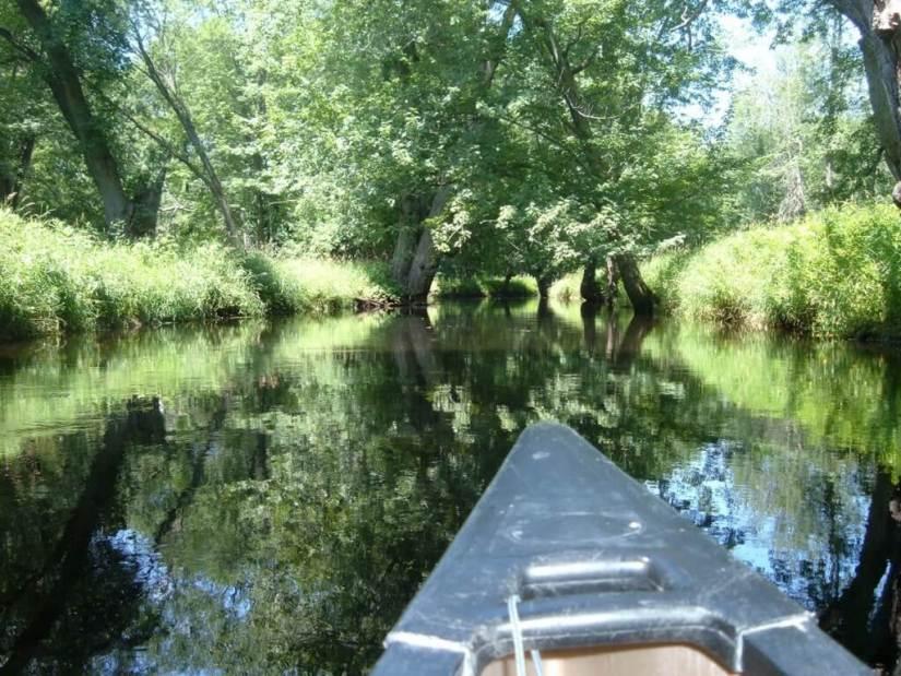 canoeing on nottawasaga river - minesing wetlands, ontario