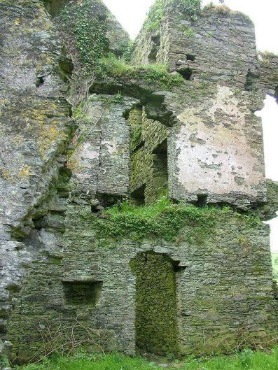 Coppinger's Court ruins, grass and stone walls, county cork, Ireland
