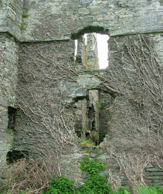 Coppinger's Court ruins, view through west wall, county cork, Ireland