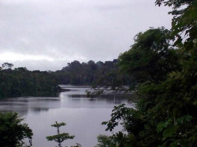 sandoval lake, amazon basin, peru