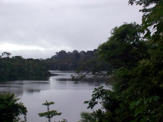 sandoval lake, amazon basin, peru