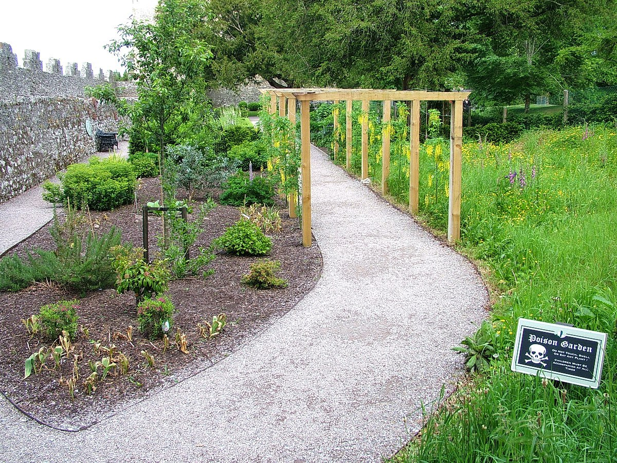 gardens in the poison garden at blarney castle, ireland