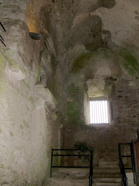 An image of the stone walls inside Blarney Castle near Cork in Ireland. Photography by Frame To Frame - Bob and Jean.
