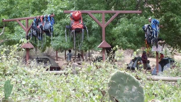 campground at indian garden, grand canyon 27