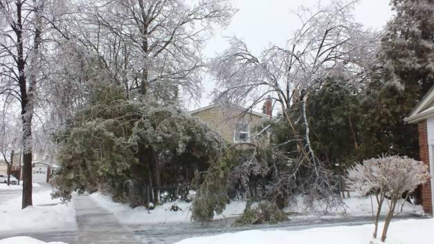 ice storm toronto 2013 - pic1