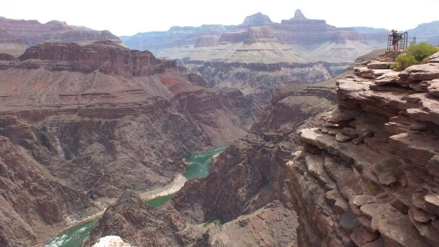 plateau point lookout, grand canyon 17
