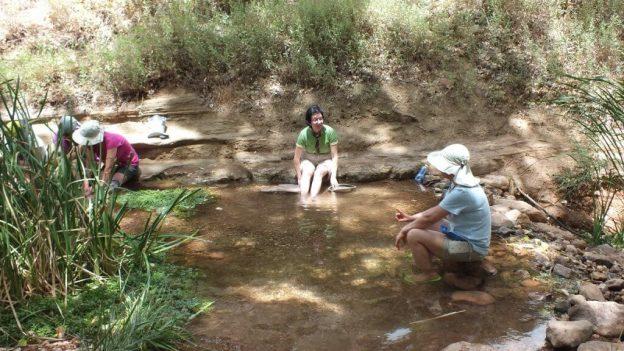 tiny pond at indian garden, grand canyon 22